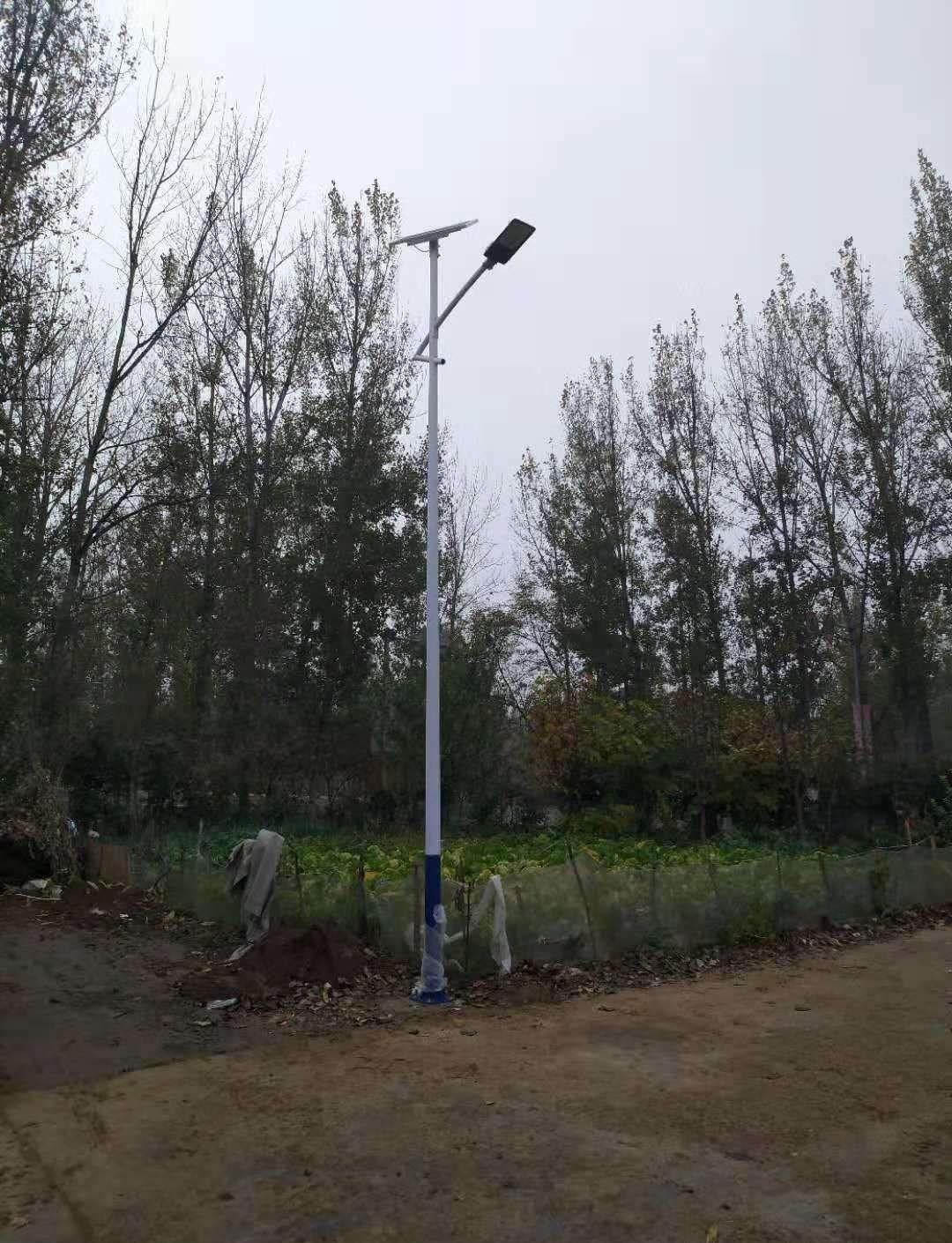 内江优秀扶贫路灯找哪家,路灯安装施工